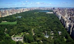 Những thành phố nhiều cây xanh nhất thế giới