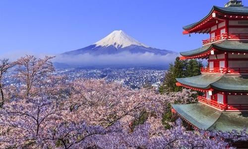 Tour Nhật Bản ngắm hoa anh đào trọn gói từ 16,9 triệu đồng