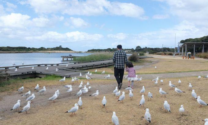 Chồng Việt 'cày' 200 trang luật Australia để đưa vợ đi du lịch
