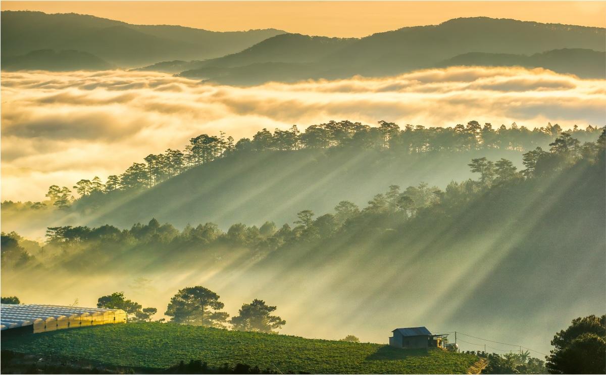 Những điểm ngắm sương vờn mây lúc bình minh ở Đà Lạt - VnExpress Du lịch