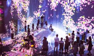 Không gian ánh sáng cho khách chụp ảnh 'sống ảo' ở Nhật Bản