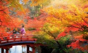 Những điểm ngắm mùa thu đẹp nhất Nhật Bản
