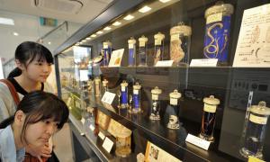 Bảo tàng không dành cho người yếu tim