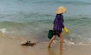 Người dân đổ thẳng rác xuống biển Nhơn Lý