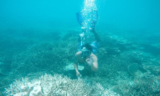 5 ngày 4 đêm khám phá Côn Đảo