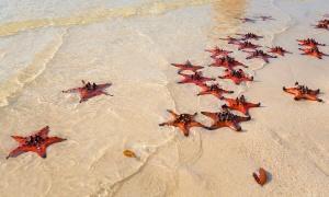 6 bãi biển đẹp nhất Phú Quốc