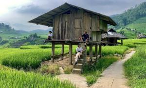 Trốn phố về rừng ở Nậm Cang