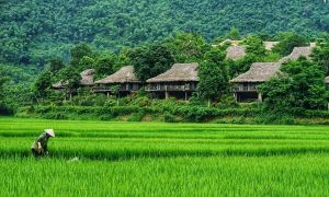 Cuối tuần check-in 3 resort xanh mướt gần Hà Nội