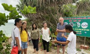 Khách Tây xem rùa đẻ trứng ở Côn Đảo