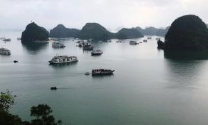 Giảm 50% giá vé thăm vịnh Hạ Long đến hết năm