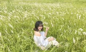 3 đồng cỏ tranh Hà Nội hấp dẫn giới trẻ