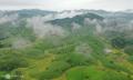 Thung lũng đồi chè đẹp nhất Việt Nam