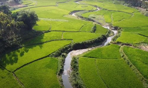 Khách Tây mê mẩn những cung đường Việt