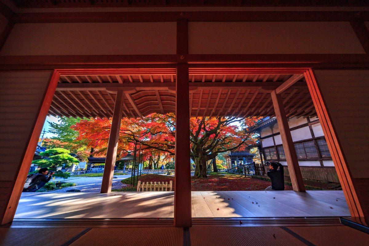 Autumn-Fukuoka-4