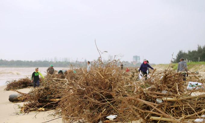 Biển Nhật Lệ ngập củi, rác