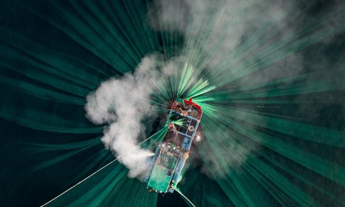 5 ảnh Việt Nam đạt giải ảnh chụp trên cao