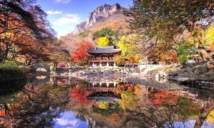 7 nơi chụp ảnh mùa thu đẹp nhất Hàn Quốc