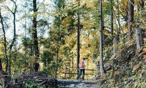 Trekking 'con đường tơ lụa' của Nhật Bản