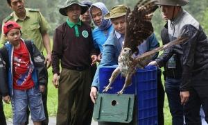 Tour thả động vật về rừng Cúc Phương