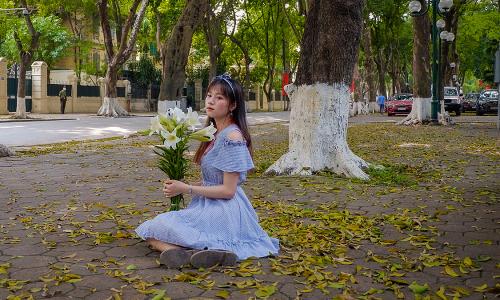 Mùa lá sấu rụng hút khách chụp ảnh