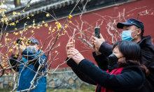 Khách Trung Quốc du lịch đông hơn trước đại dịch