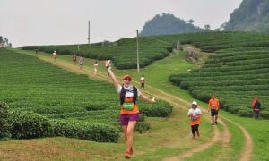 Hơn 4.000 người tham gia giải chạy ngắm cảnh Mộc Châu