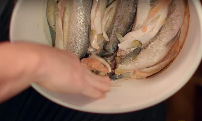 Gordon Ramsay ăn cá hồi muối bốc mùi thối