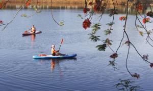 Chèo SUP ngắm hoàng hôn trên sông Hương