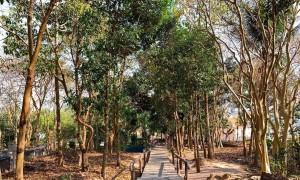 Núi Bình San - điểm đến nổi tiếng ở Kiên Giang