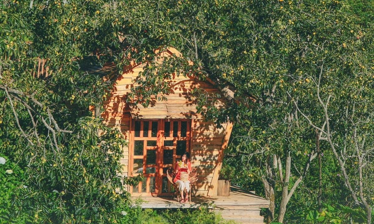 Vườn hồng trĩu quả của vợ chồng 'bỏ phố lên núi'